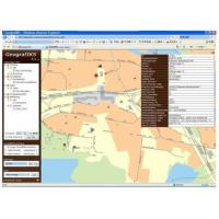 China Service GIS SuperMap IS .NET wholesale