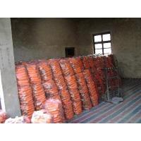 China AGRICULTURE PRODUCTS CARROT wholesale