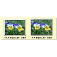 China + Digital Image Solutions wholesale