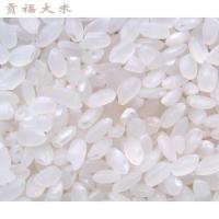 Wholesale Gongfu rice from china suppliers
