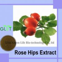 China Rose Hips Extract wholesale