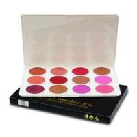 China Makeup 21 - 12 HD Blusher Kit wholesale