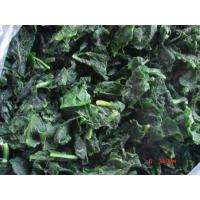 China Frozen Spinach wholesale