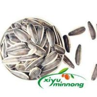 China Sunflower Seeds Nuts Dried Kernels For Birds Organic Natural Whole Dried Jumbo Size In Shell wholesale