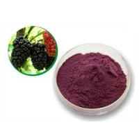 China Mulberry Leaf P.E mulberry leaf extract mulberry leaf powder wholesale