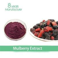 China 100% Natural dyes mulberry fruit extract powder wholesale