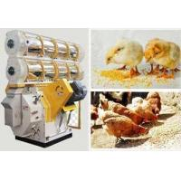 China blog complete automatic livestock pellet mill line price wholesale