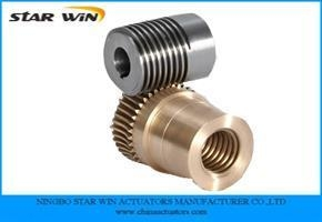 Quality Custom Worm Gears for sale