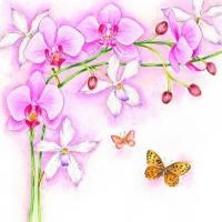 S318 Orchids (for 6 cards)