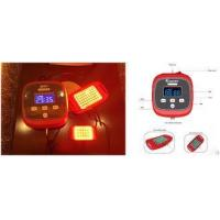 Privacy Disease Treatment Infrared Light Therapy Devices With 2 Irradiation Probe