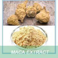 China Health food Male sex enhancement 100% genuine NATURAL MACA POWDER wholesale