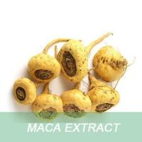 China High Quality Maca Powder for Hair Growth Shampoo in China wholesale