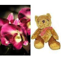 Flowers Fresh Orchids and Teddy Bear
