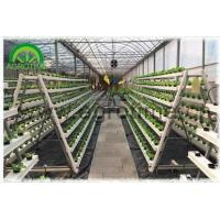 China Hydroponics Systems wholesale
