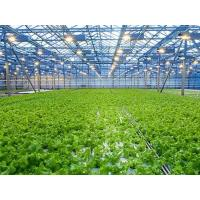 China Easily Assembled Agricultural Greenhouse wholesale