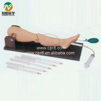China Bone puncture and femoral vein puncture training model wholesale