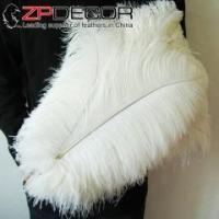 China ZPDECOR 50-55cm(20-22inch) 100pieces/lot Costume Design Dyed Ostrich Feather wholesale