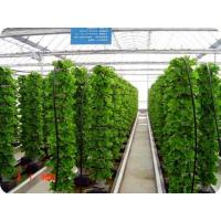 Wholesale Agricultural vertical farming hydroponic commercial system from china suppliers