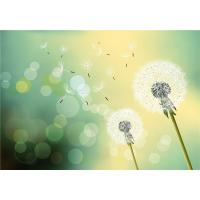 Wholesale Mold Resistant Faux Stone Interior Wall Panels Dreamy Dandelion In Midsummer from china suppliers