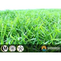 China Conventional food Wheat grass powder on sale
