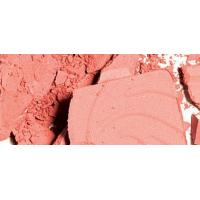 Wholesale Picture Perfect Powder Blush from china suppliers
