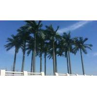 Buy cheap Simulation of coconut trees from wholesalers
