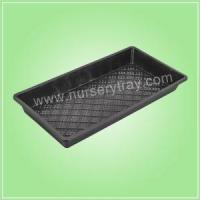 China Nursery Plugs Seed Starting Trays Flats wholesale