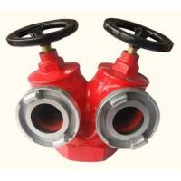 China Indoor Fire Hydrant SNSS65 wholesale