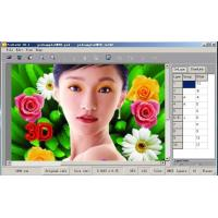 China PSDTO3D Advanced version 3d lenticular software wholesale