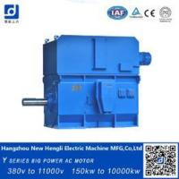 China made in china High Voltage AC electric Motor squire cage ac motor on sale