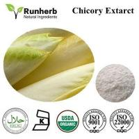 China Chicory Extract ,chicory root extract factory wholesale