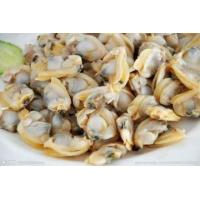 China Frozen Cooked Short Necked Clam Meat wholesale