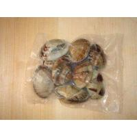 China Frozen Cooked Short Necked Clam wholesale