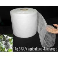 China Non Woven Fabric Applicated on Medical&Health wholesale