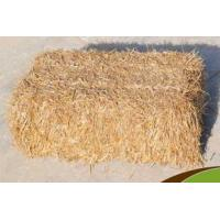 Wholesale Wheat Straw from china suppliers