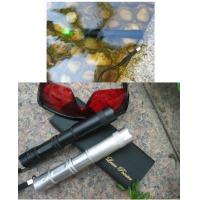 China High power water-proof green laser pointer(portable) wholesale