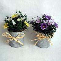 Wholesale Mini Daisy, Dried Sorghum on metal pot from china suppliers