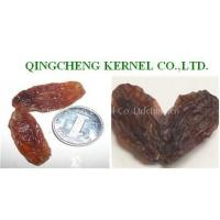 Wholesale Red Raisin from china suppliers