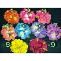 Hibiscus flowers/XL/5F/ 30400030