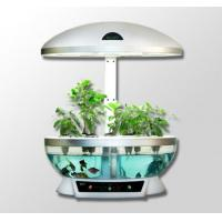 China Cookware MOCLE indoor garden Hydroponics, fish farming, smart lamp wholesale