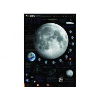 Wholesale The Moon Space Poster from china suppliers