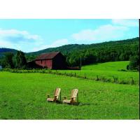 China Salter Adirondack Special Collection wholesale