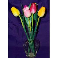 Buy cheap Large Hand Craved Colorful Tulips from wholesalers