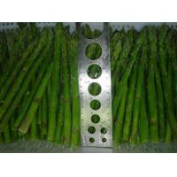 China Vegetables Fresh Asparagus wholesale