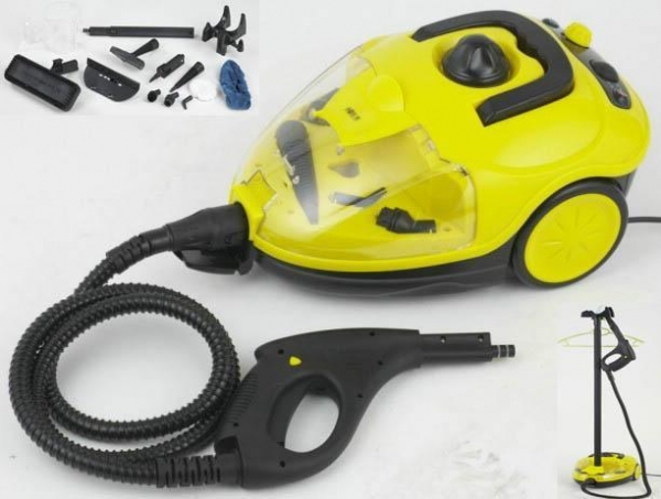 China Steam cleaner with garment