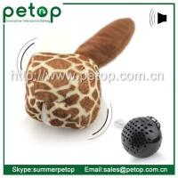 China Pet Toys PT2006 Hight Quality Crazy Ball Cat Toy wholesale