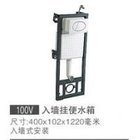 Wall hung toilet 100V