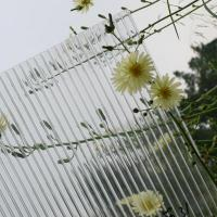 anti-fog polycarbonate sheet for greenhouse