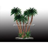 Wholesale Group date palm tree(1) from china suppliers