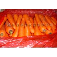 China Other products Product  Carrot wholesale